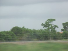 Driving through West Palm Beach, Florida